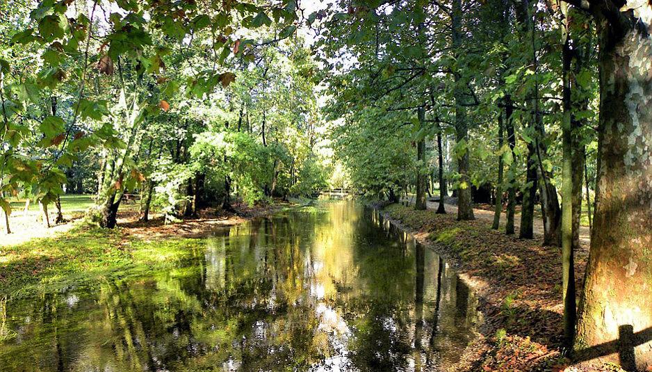 wetlands_2